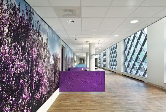 Ziekenhuis Bernhoven, Uden - Holland